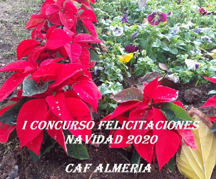 I CONCURSO FELICITACIONES NAVIDAD 2020. CAF ALMERIA